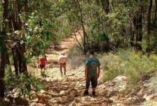 Rocky Pool Walk Trail